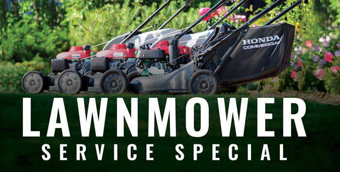 Lawnmower Service Special